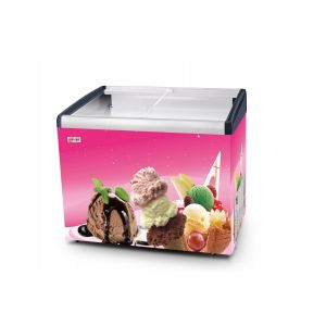 Ice Cream Display Freezer 164 Ltr Singer